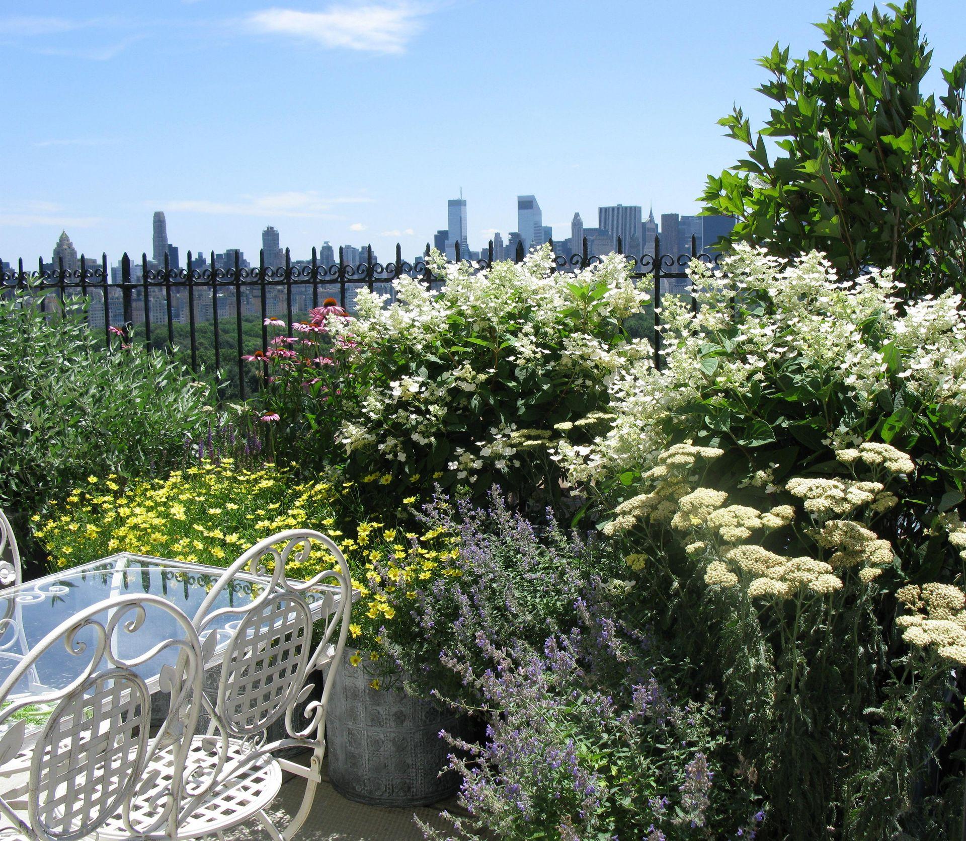 Roof Gardens Archives Cynthia Gillis Garden Design
